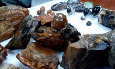 Batu Bertuah: Batu Fosil